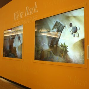 grey rear projection film